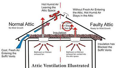 Attic Mold Remediation Michigan Mold Removal Inc